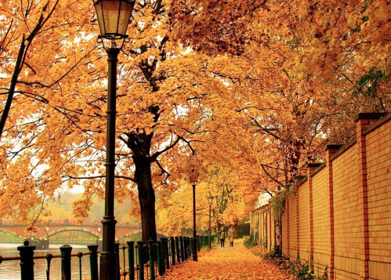 autumn2-570x409
